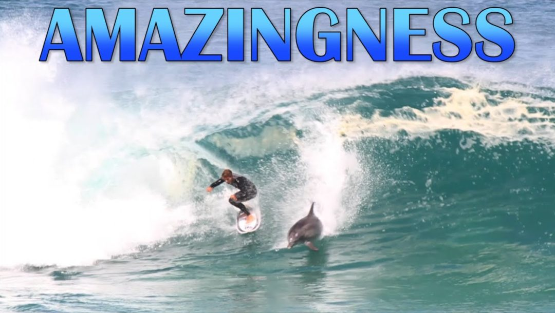 Amazingness   Funny Videos