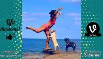 funny dogs trolling human E2MuPwj9usM Sinnlos Internet - Die sinnlose Portion Spaß